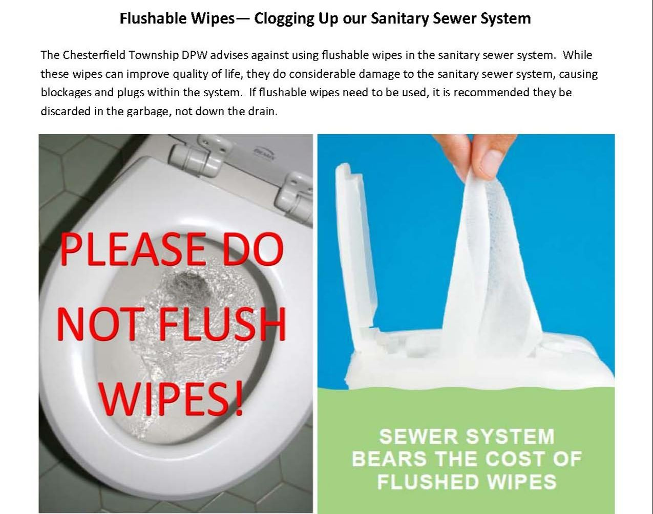 Flushable Wipes Page